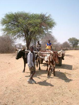 Unterwegs in Angola