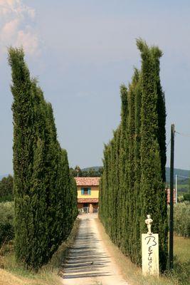 ...unterwegs in der Toskana....