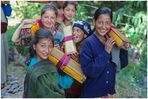 Unterwegs in Kalpa, Himachal Pradesh, Indien 03