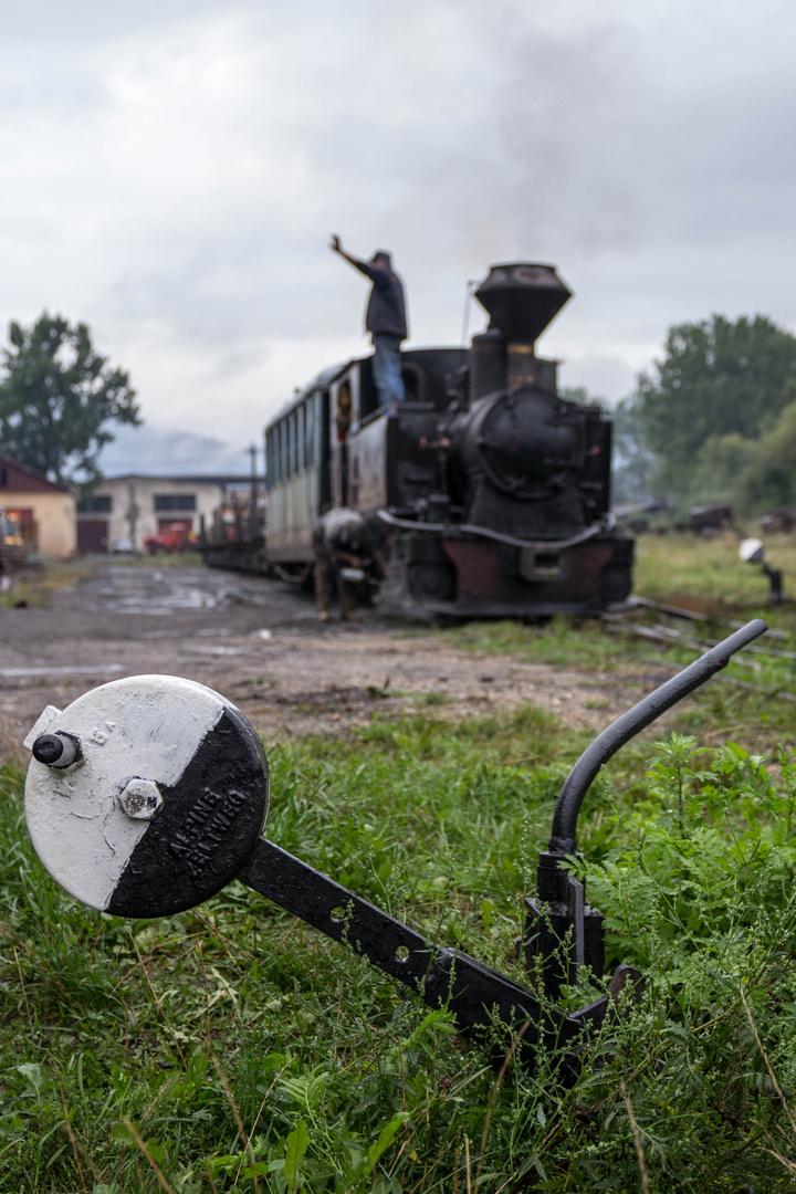Unterwegs in Rumäniens Wäldern V