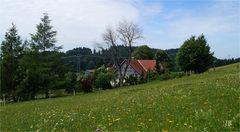 Unterwegs mit dem MTB im Südschwarzwald