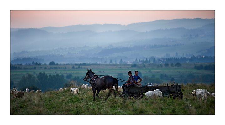 Unterwegs mit dem Pferdefuhrwerk