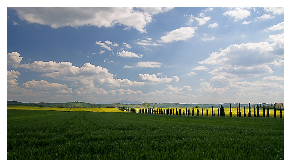 Unterwegs - Toscana I