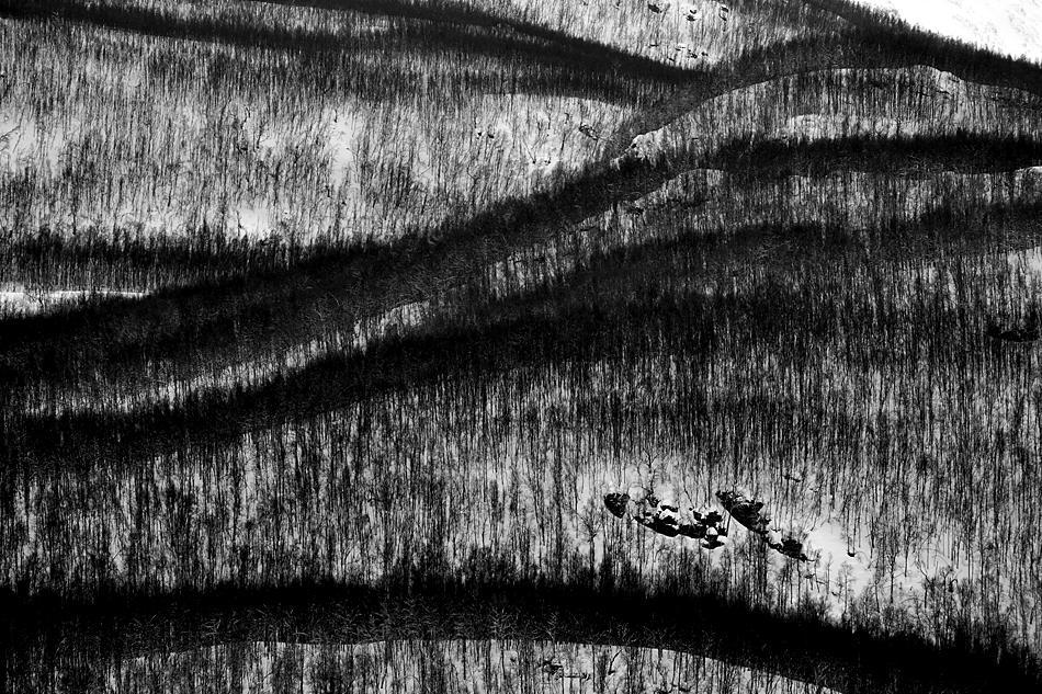Unterwegs zum Nordkapp im Winter – Winterwald Landschaft