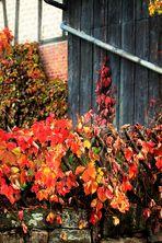 unverkennbar Herbst auf dem Land