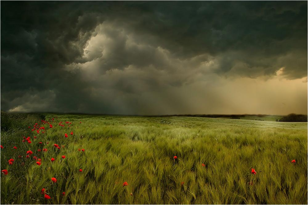 Unwetter...
