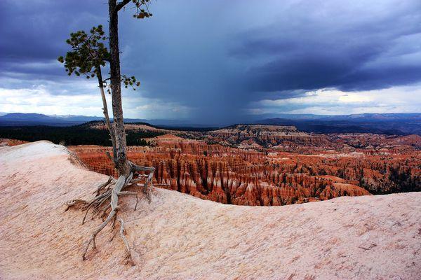 Unwetter im Bryce Canyon