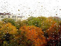 Unwiderruflich Herbst