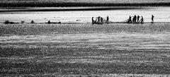 uomini di mare