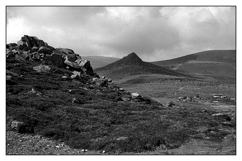Upper Highlands