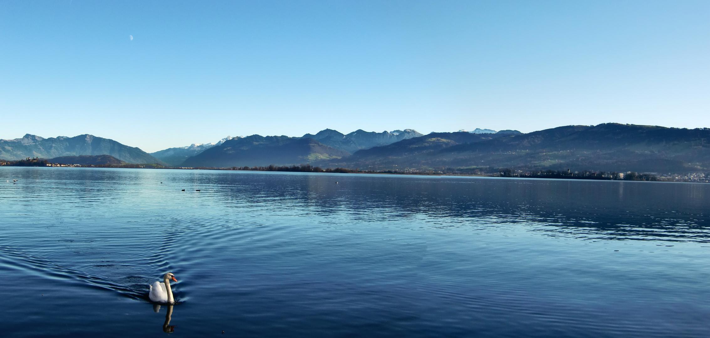 Upper Lake of Zurich