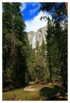 """Upper Yosemite Falls"" nebst abfließendem Bach"