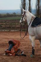 Upps........wo ist denn jetzt mein Reiter hin????
