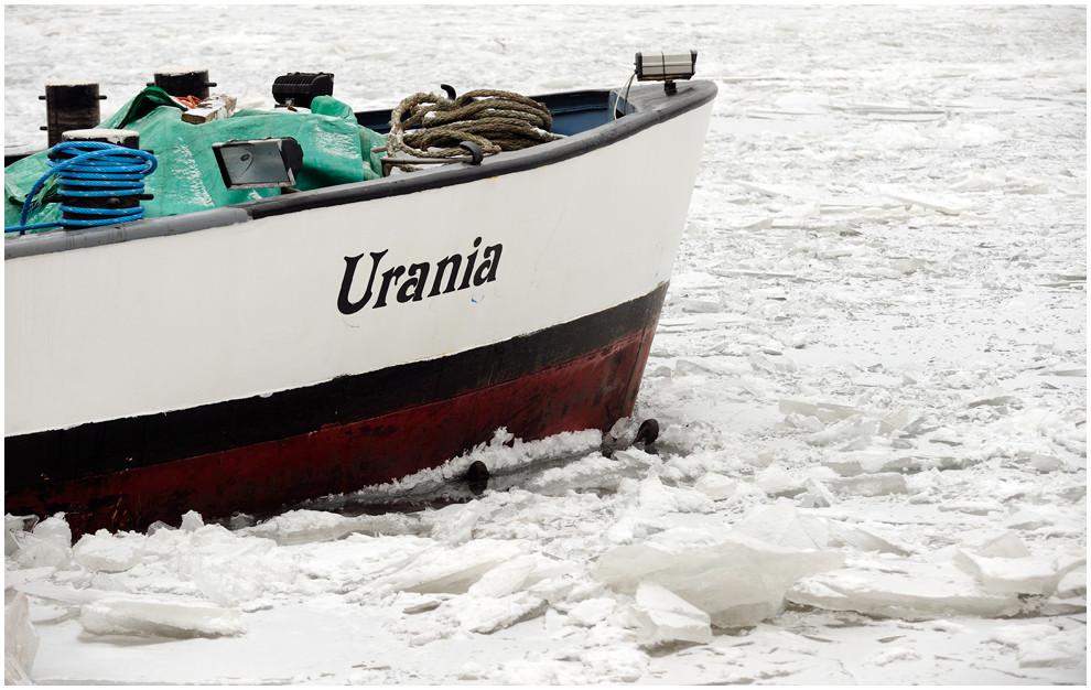 Urania im Eis