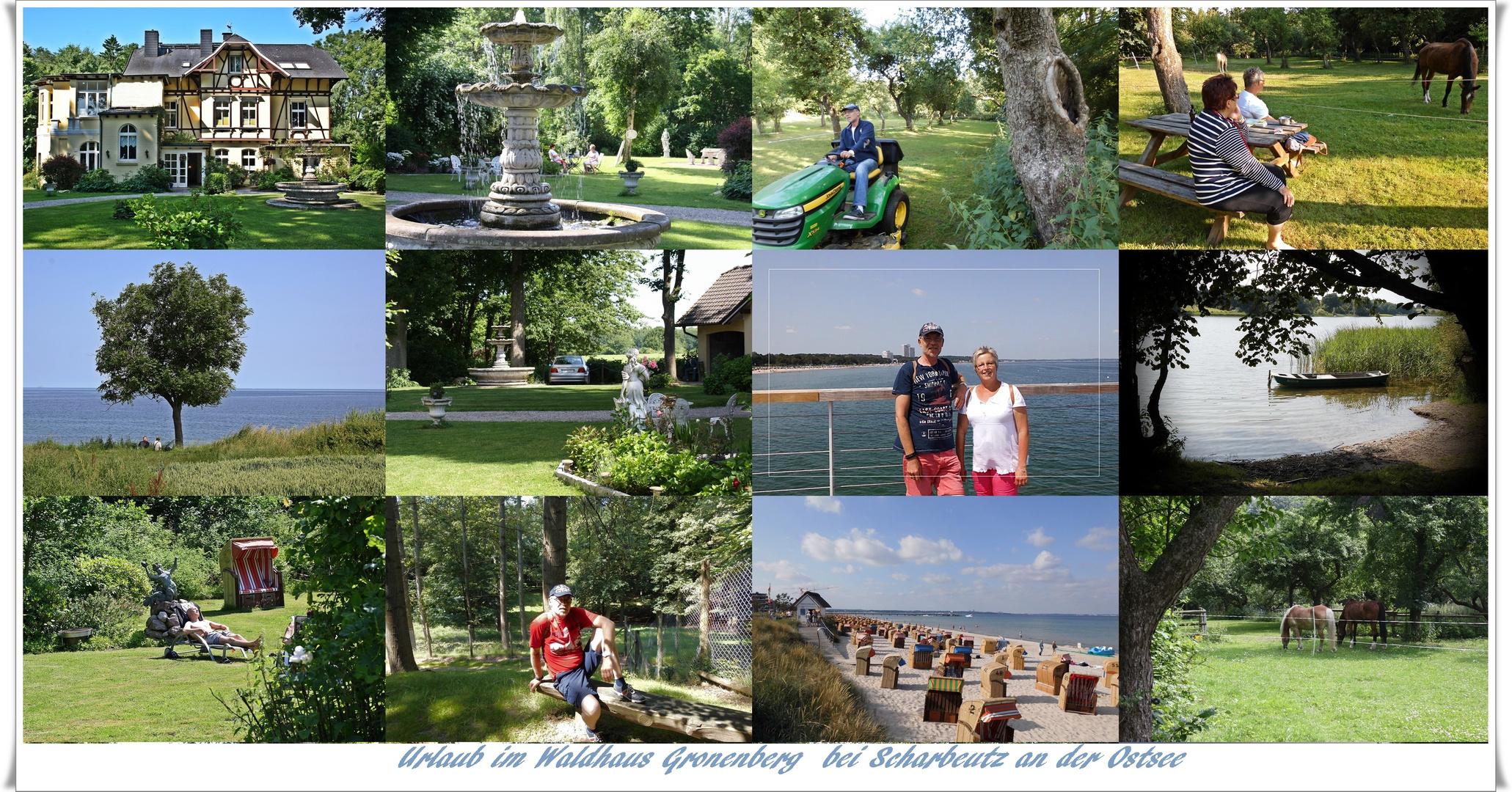 Urlaub im Waldhaus Gronenberg an der Ostsee
