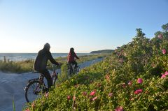 Urlaub Insel Hiddensee