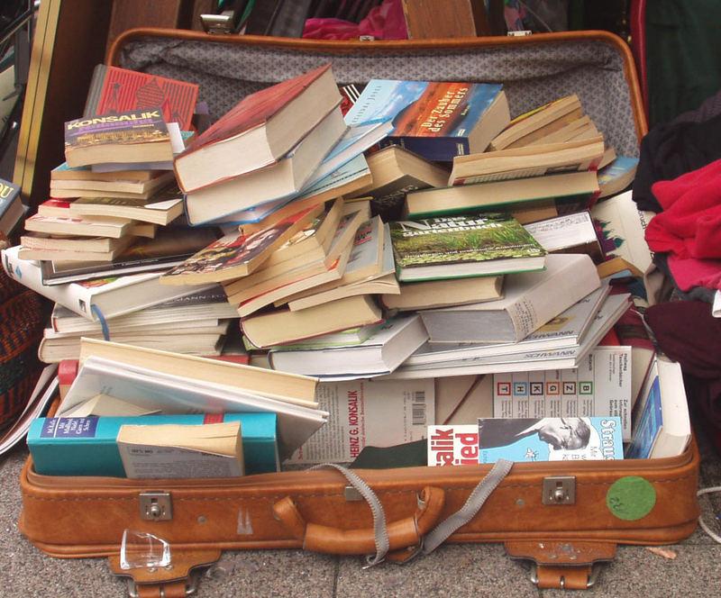Urlaubsgepäck für einen verregneten Sommer