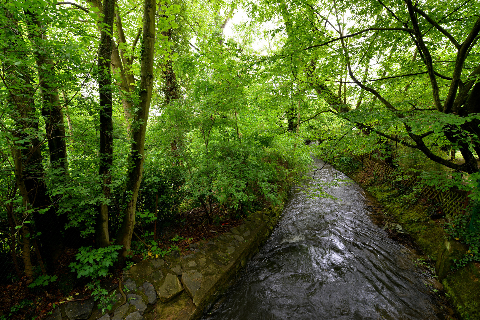 Urselbach in Niederursel