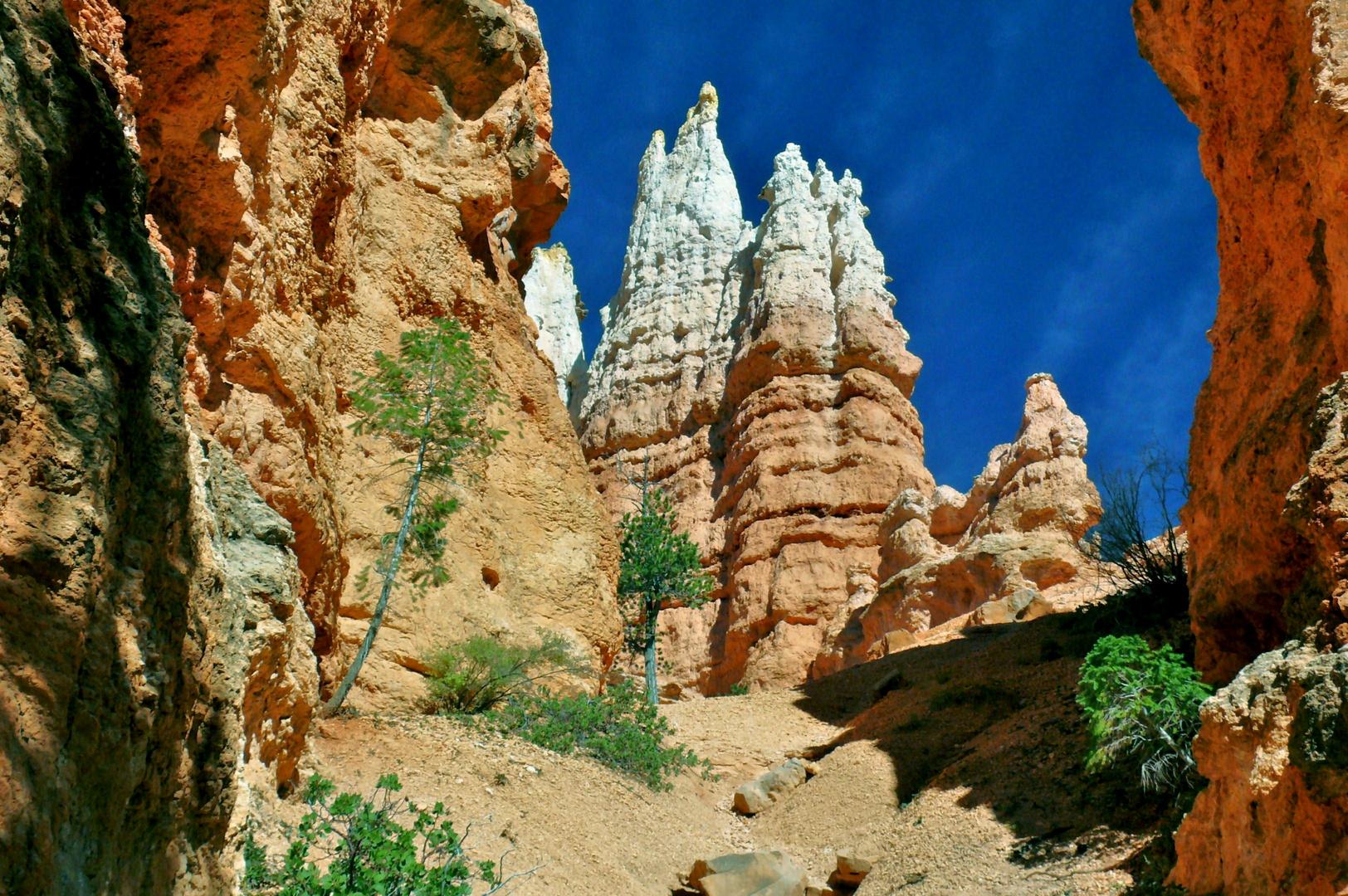"USA 2011 - Autorundreise ""Grand Circle"" - Bryce Canyon (2)"