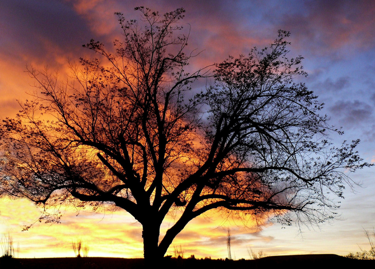 "USA 2011 - Autorundreise ""Grand Circle"" - Sonnenuntergang am Lake Powell"