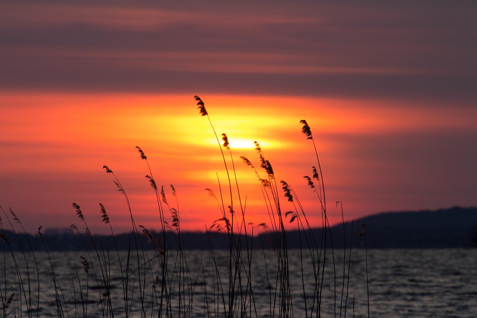 Usedom Blick aufs Achterwasser