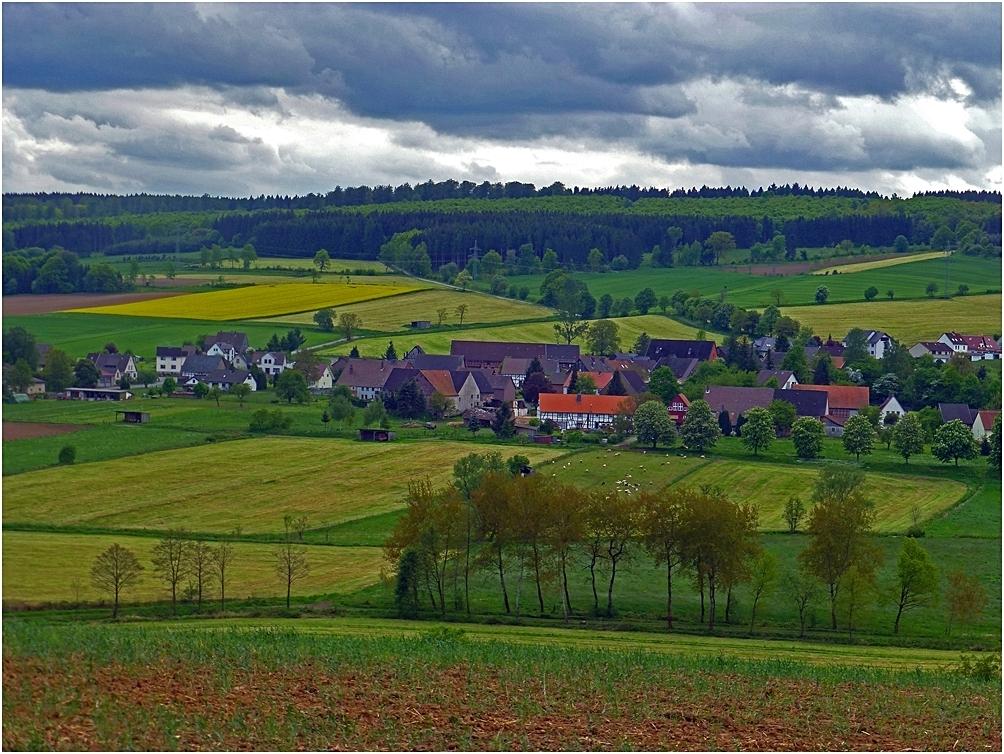 Uslar-Kammerborn