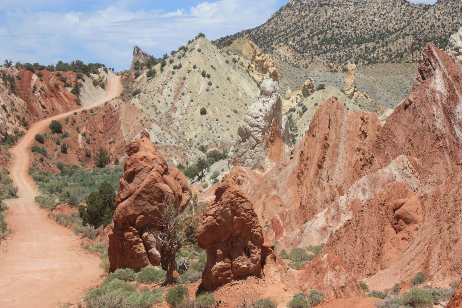 Utah 2009 / Cottonwood Canyon Road