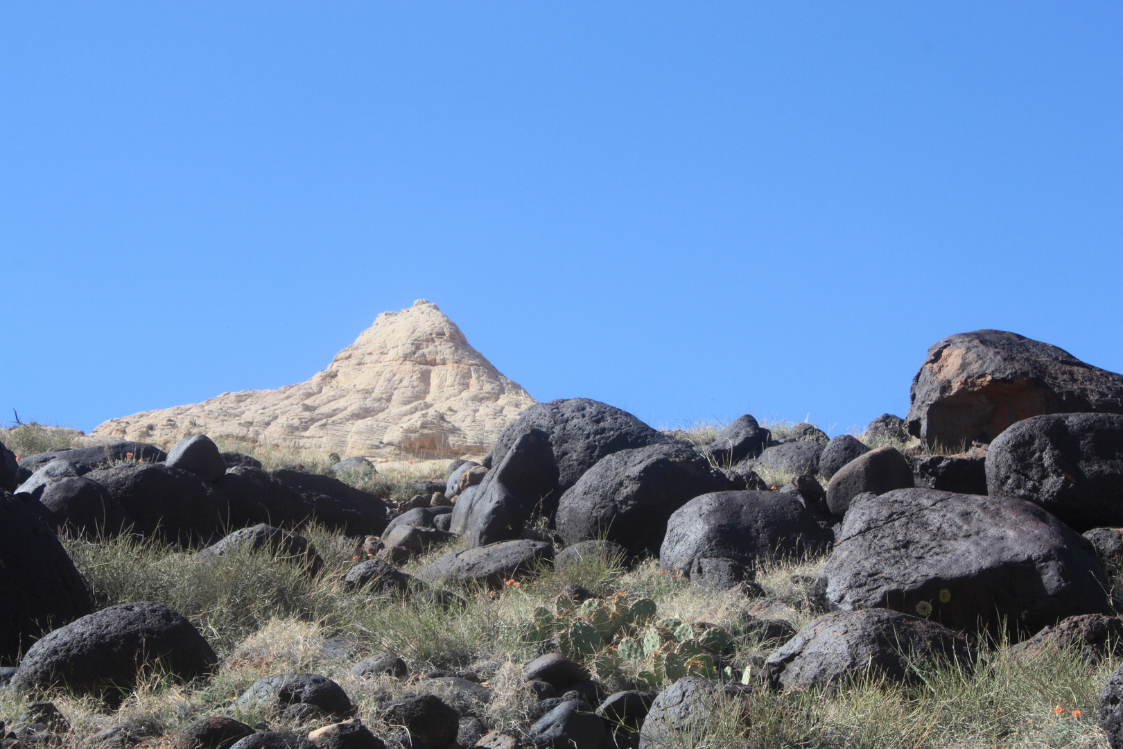 Utah 2009 / Navajo Knob