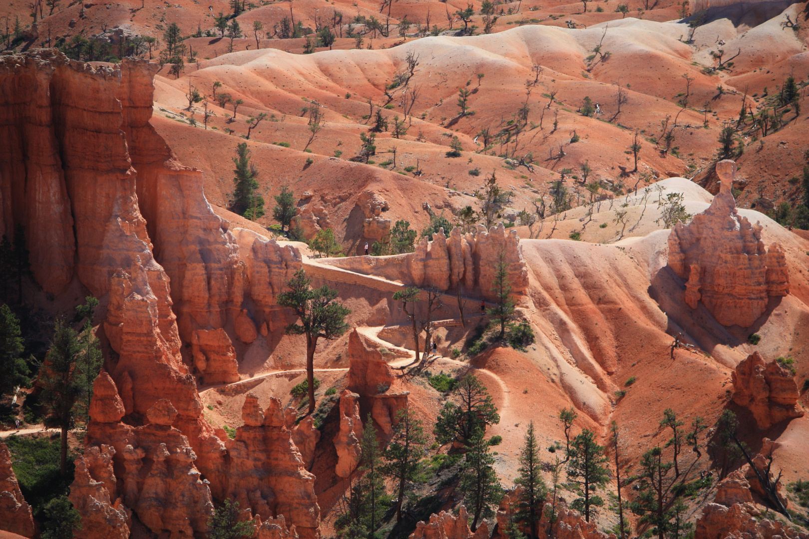 Utah 2099 / Bryce Canyon