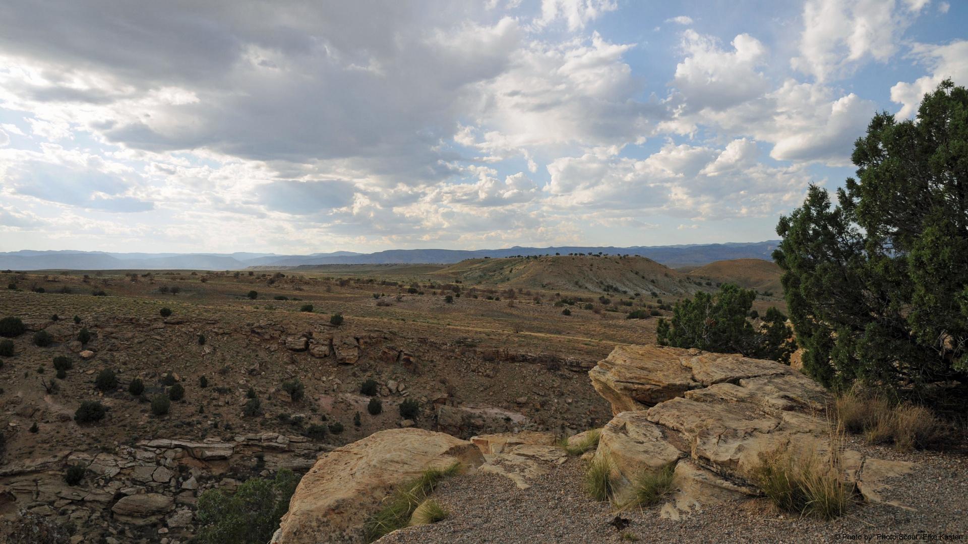 Utah's Wüste I