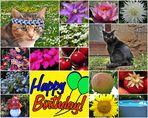 Uwe Toni hat Geburtstag