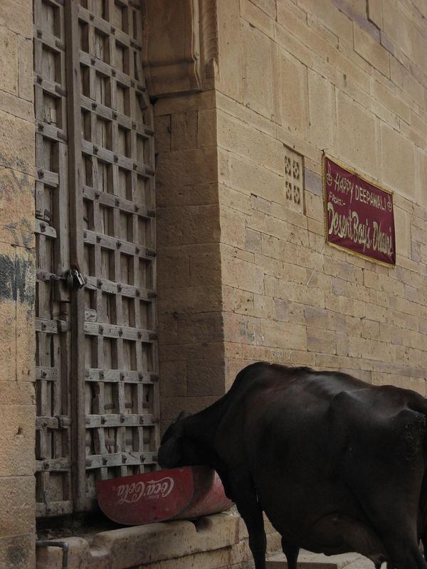 vaca-cola