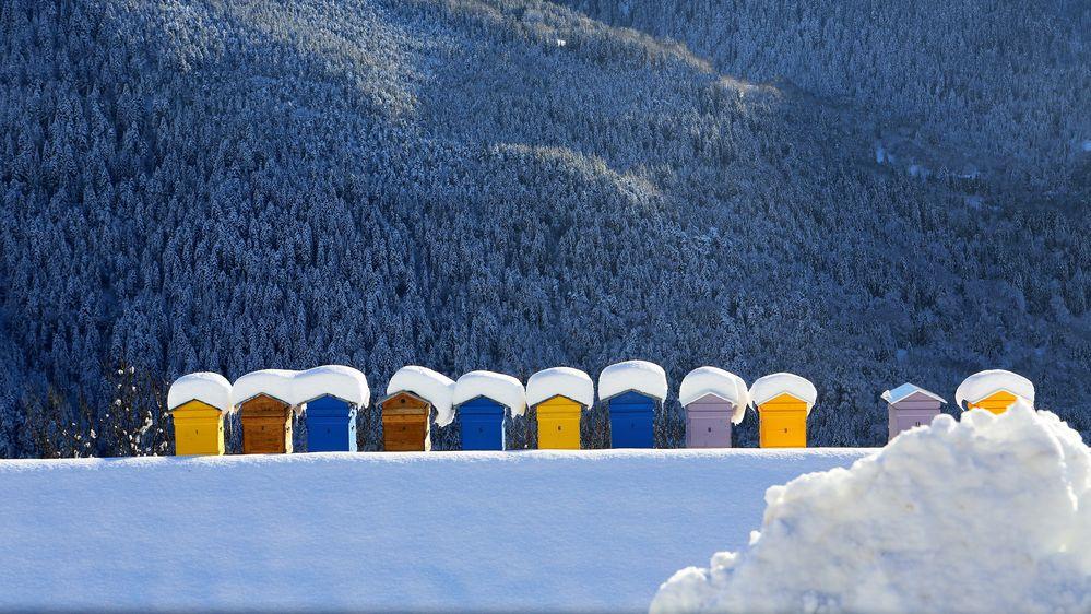 Vacances à la neige ....