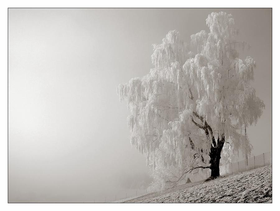 Väterchen Frost... III