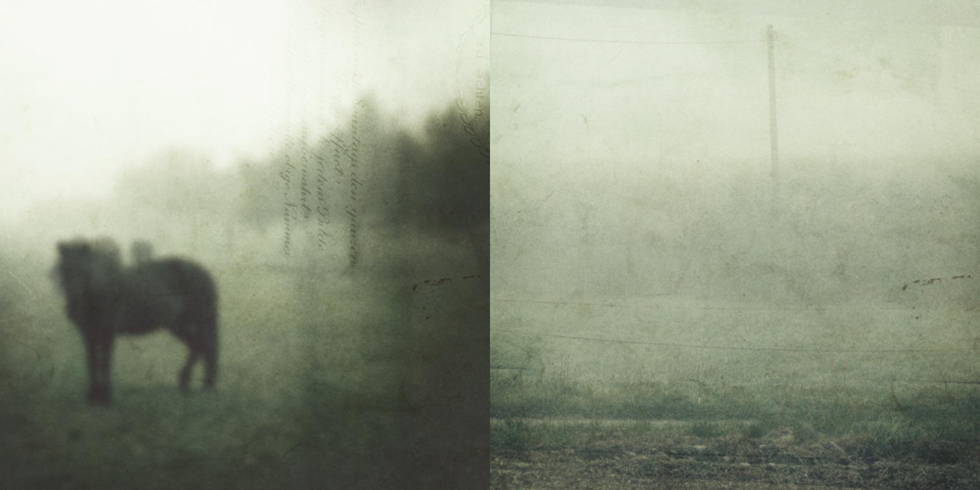 vague forms