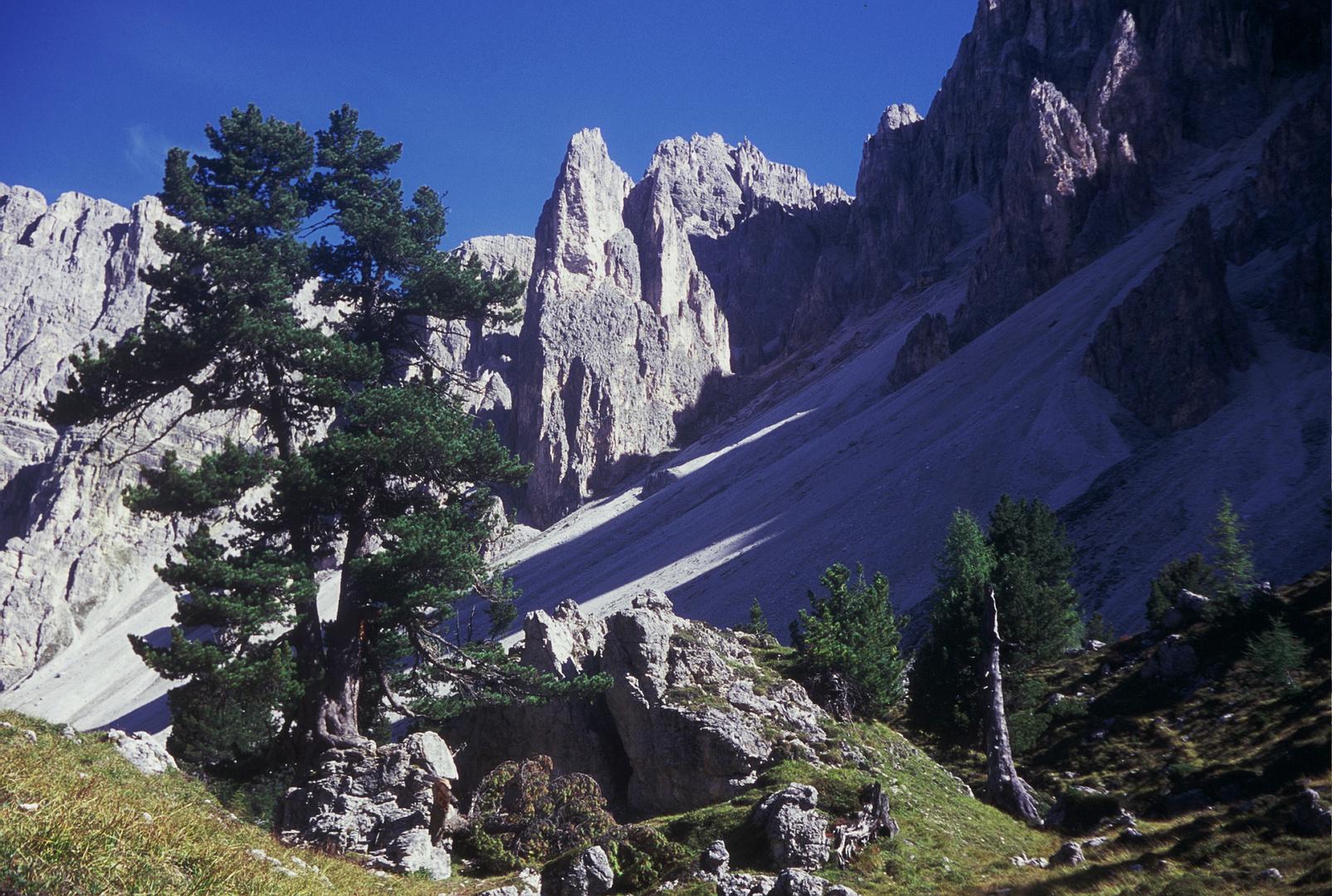 Val D´ Antersasc - Crep da L´Ora/Freitagturm - Puez - Terra Ladina