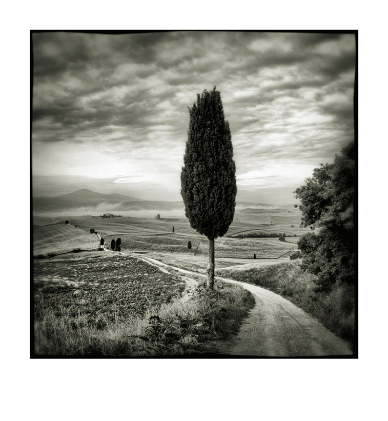 Val d'Orcia # 10