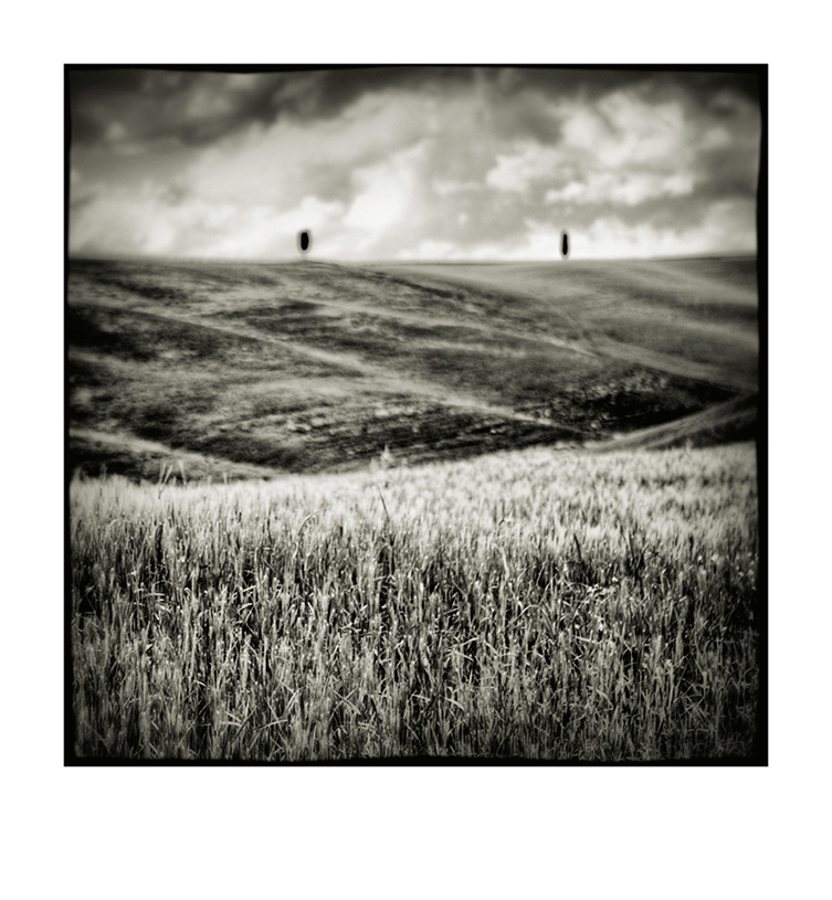 Val d'Orcia # 4