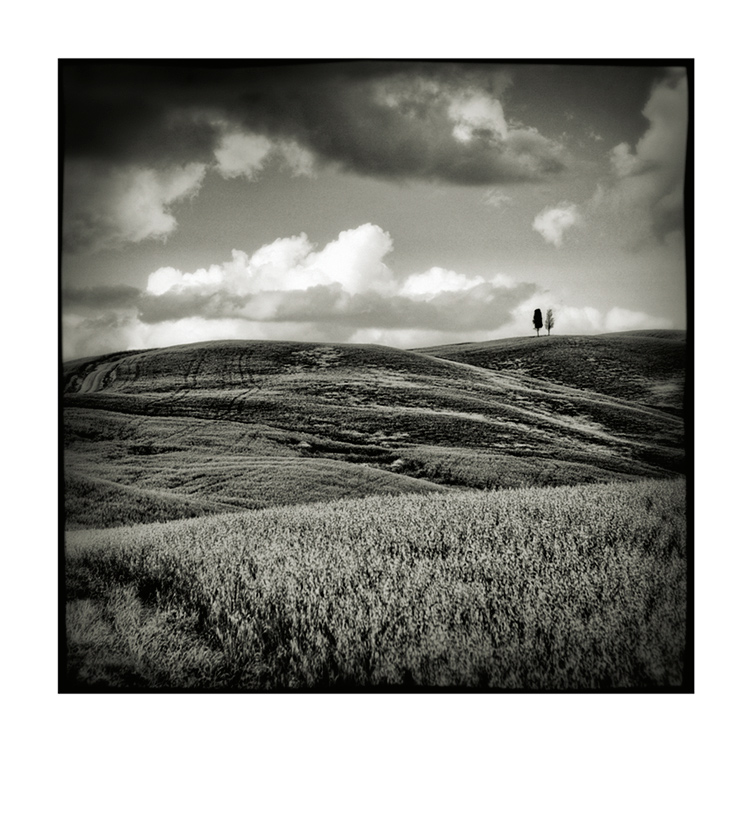 Val d'Orcia # 6