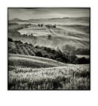 Val d'Orcia # 9