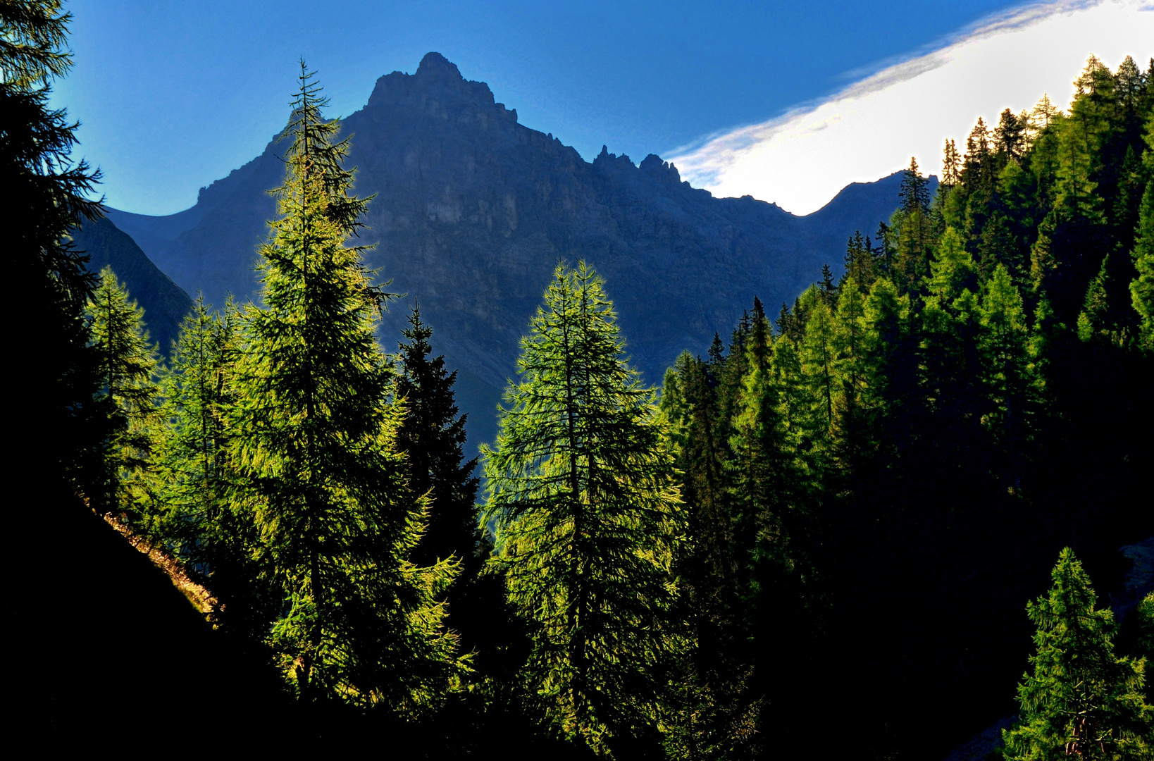 Val Trupchum im Nationalpark