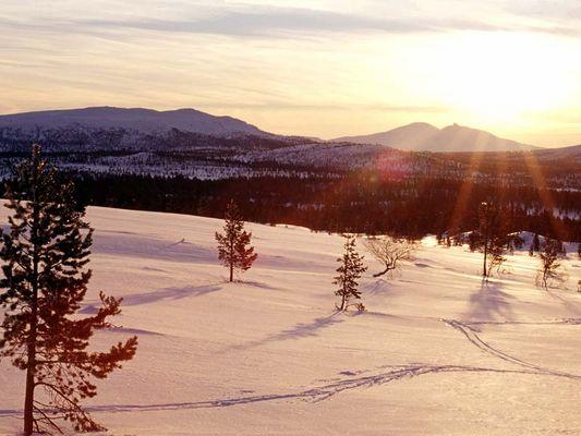 Valdalsfjellet, Norwegen