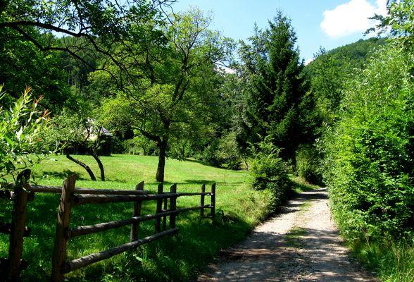 Valea Pistruia