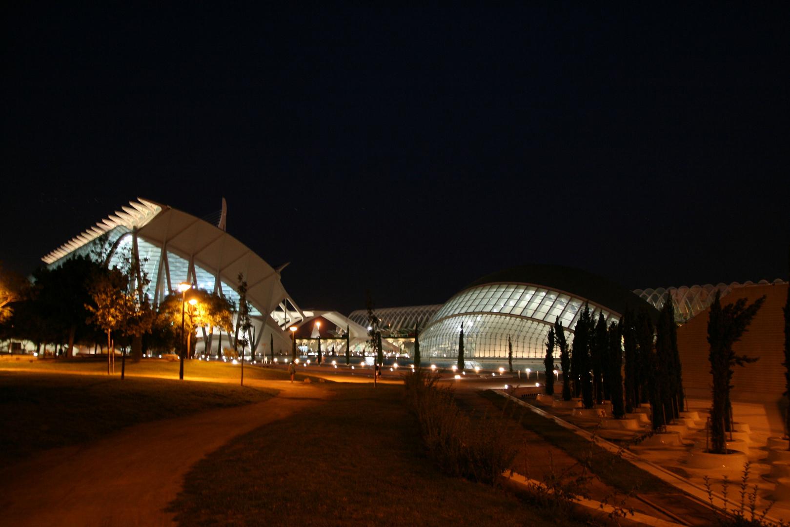 Valencia 2010 Nr.136
