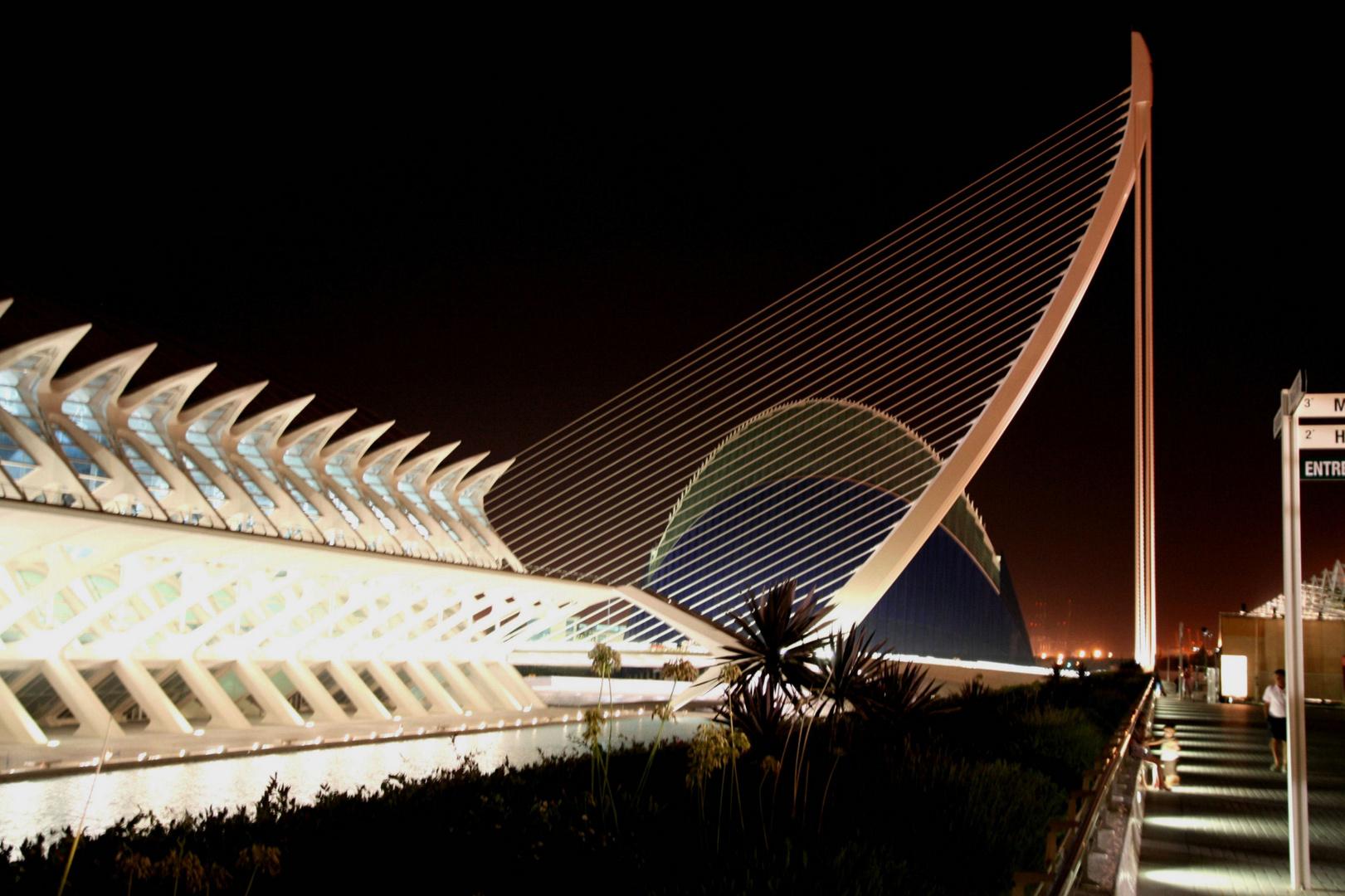 Valencia 2010 Nr.195