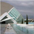 València. Ciprers i reflexes