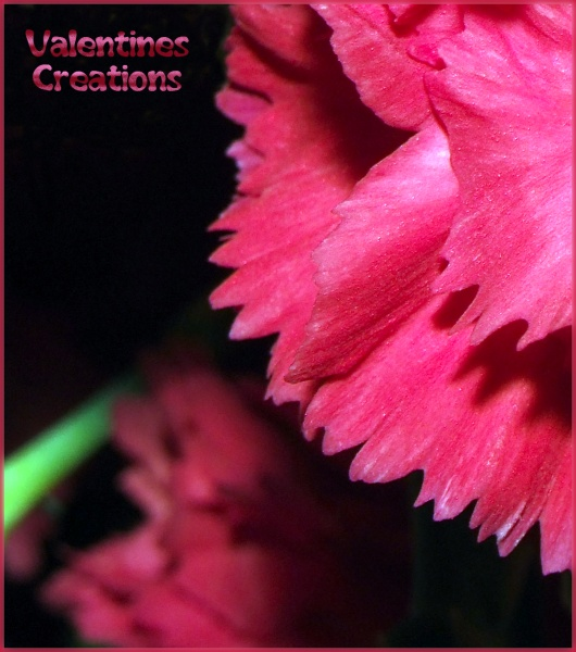 Valentines Creations