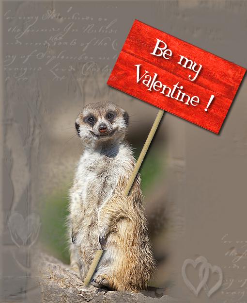 Valentinstag 2012-1 Foto & Bild | gratulation und feiertage, happy ...