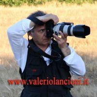 VALERIO LANCIONI FOTOGRAFO