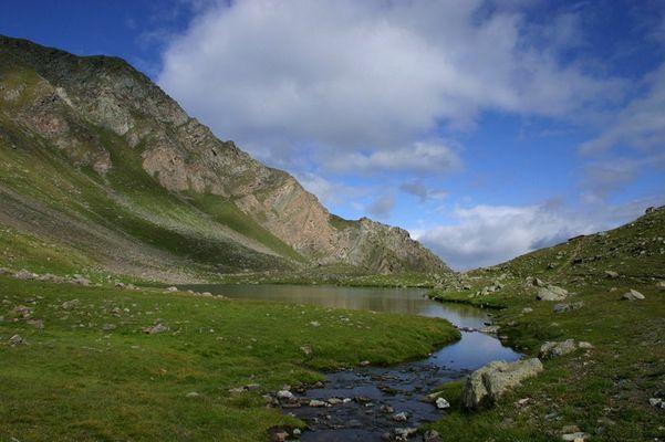 Valle Arbole
